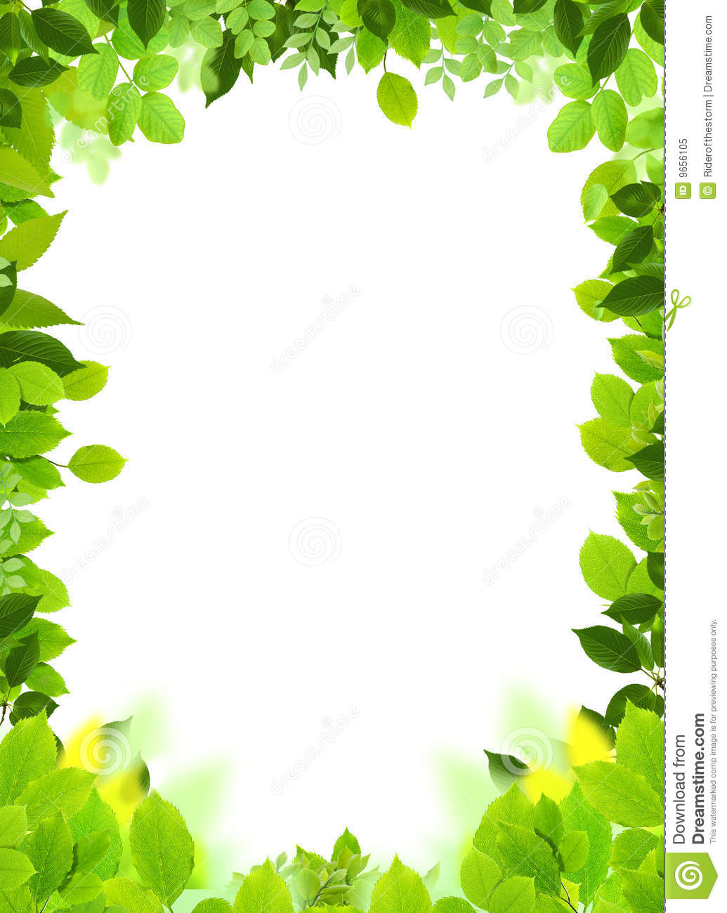 natural frame and template stock illustration illustration of green