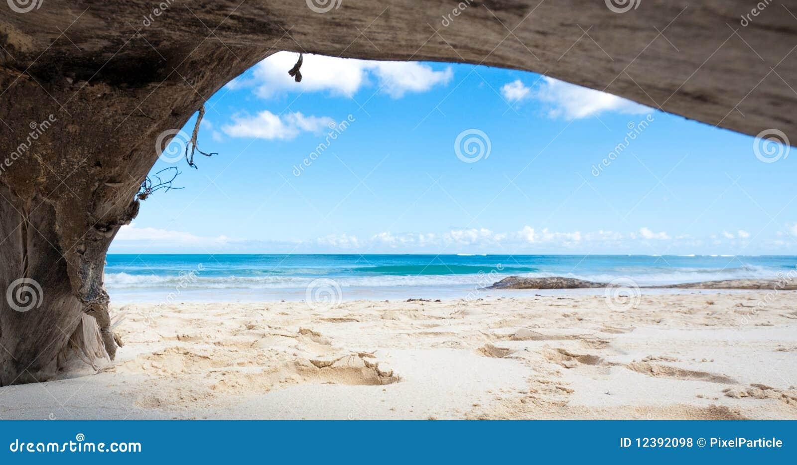 natural framed tropical beach