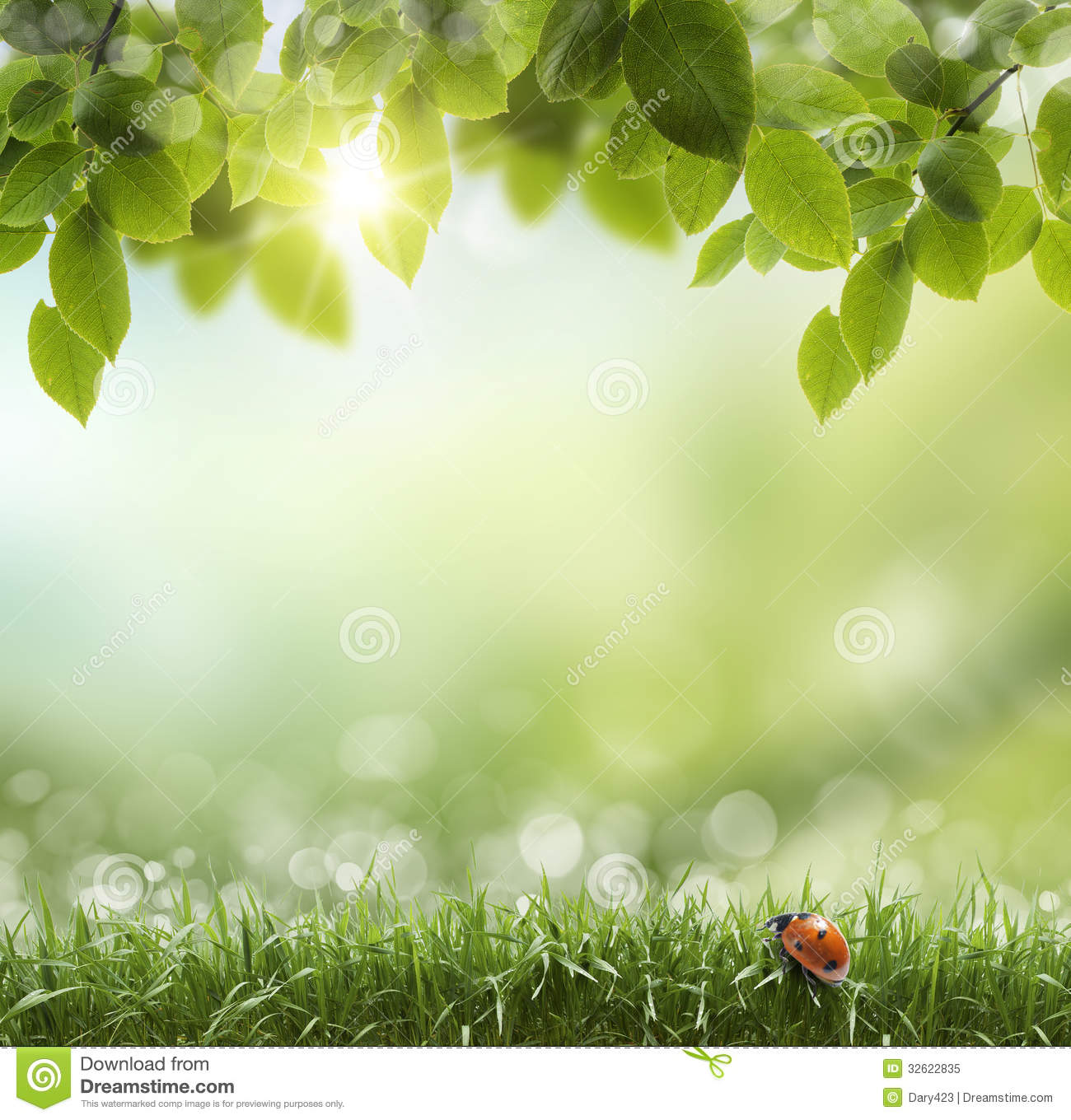 Free Nature Background Images Natural green background with