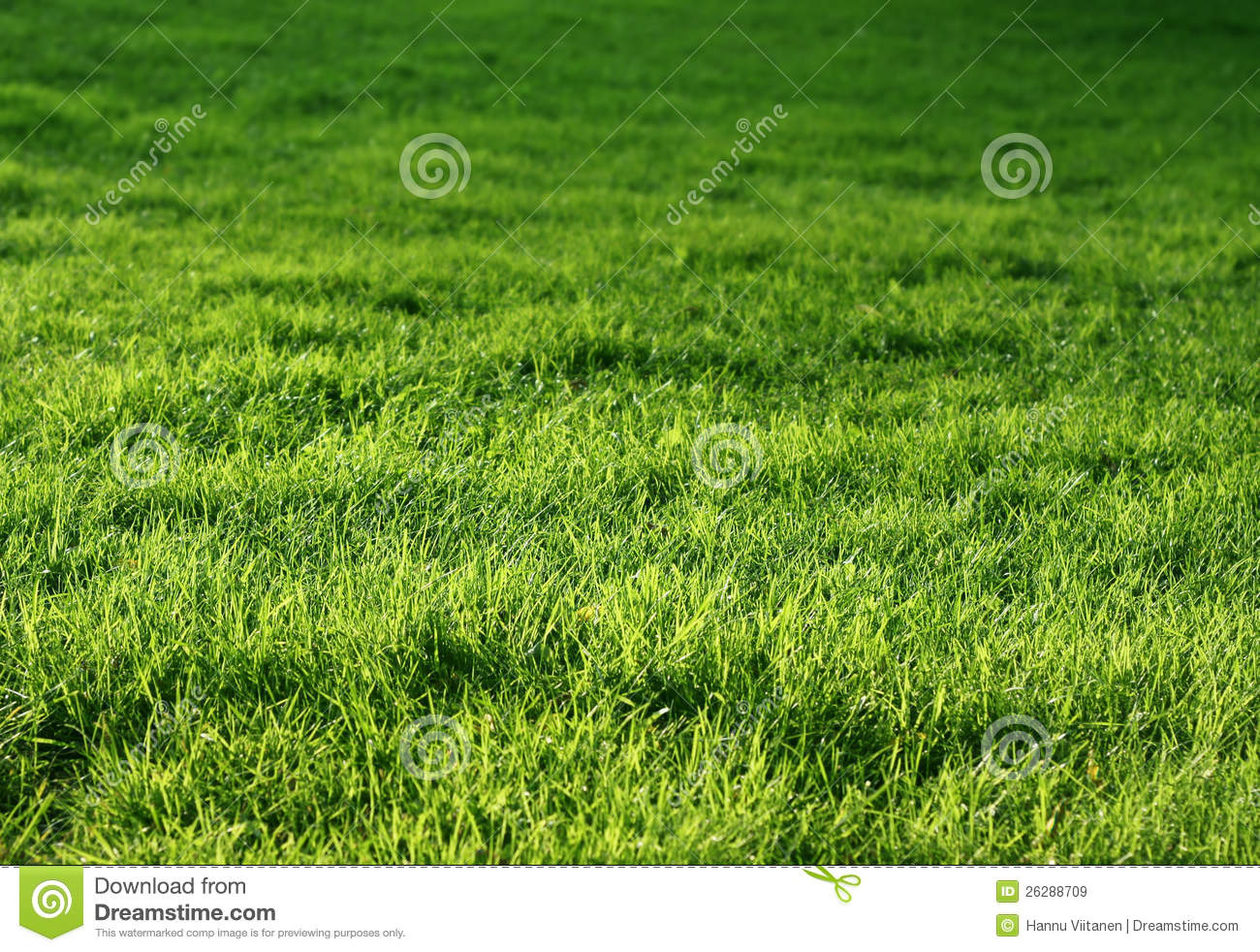 how to keep grass green naturally