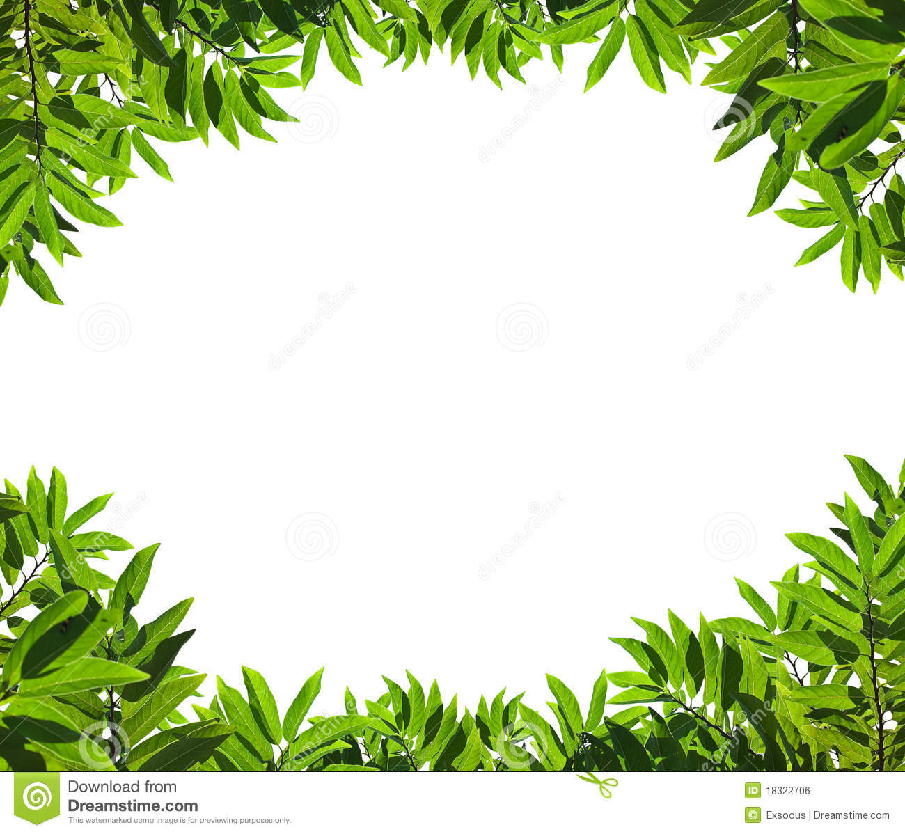 Natural green leaf frame stock photo. Image of environment - 18322706