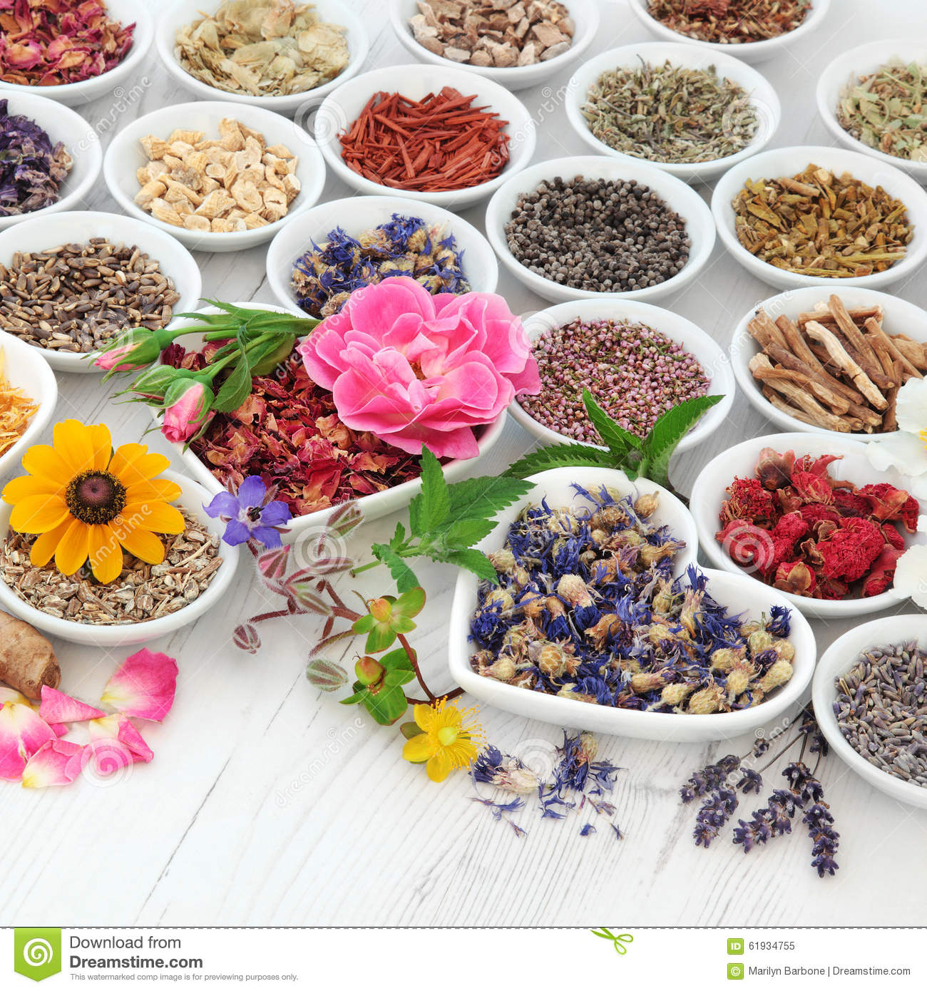 Natural Herb Pills Used For