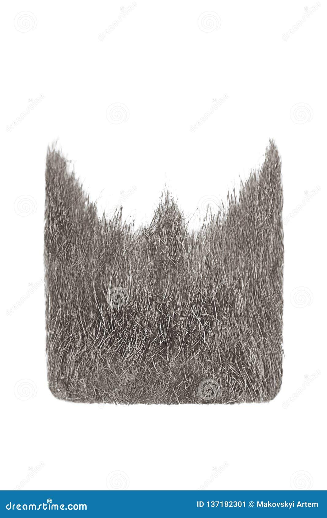 Square gray beard isolated on white. Men`s fashion