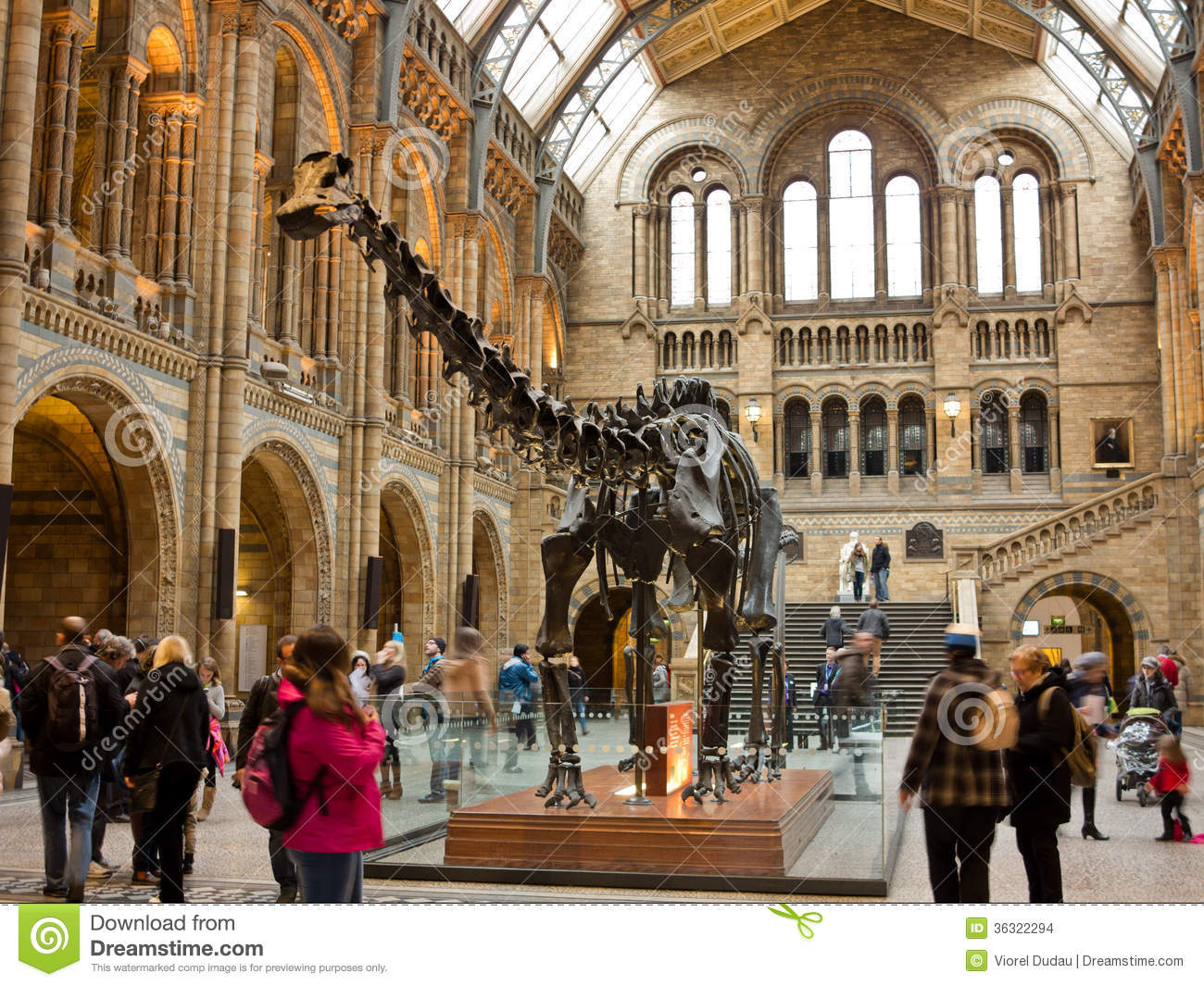 D Exhibition London : Natural history museum in london editorial stock image