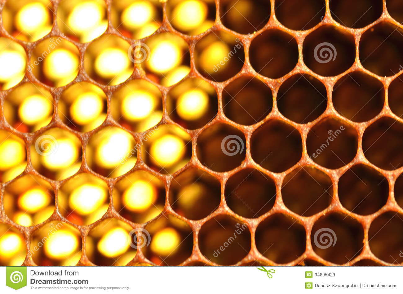 Yellow honey background with hexagonal pattern vector free download - Natural Honeycomb Royalty Free Stock Images Image 34895429