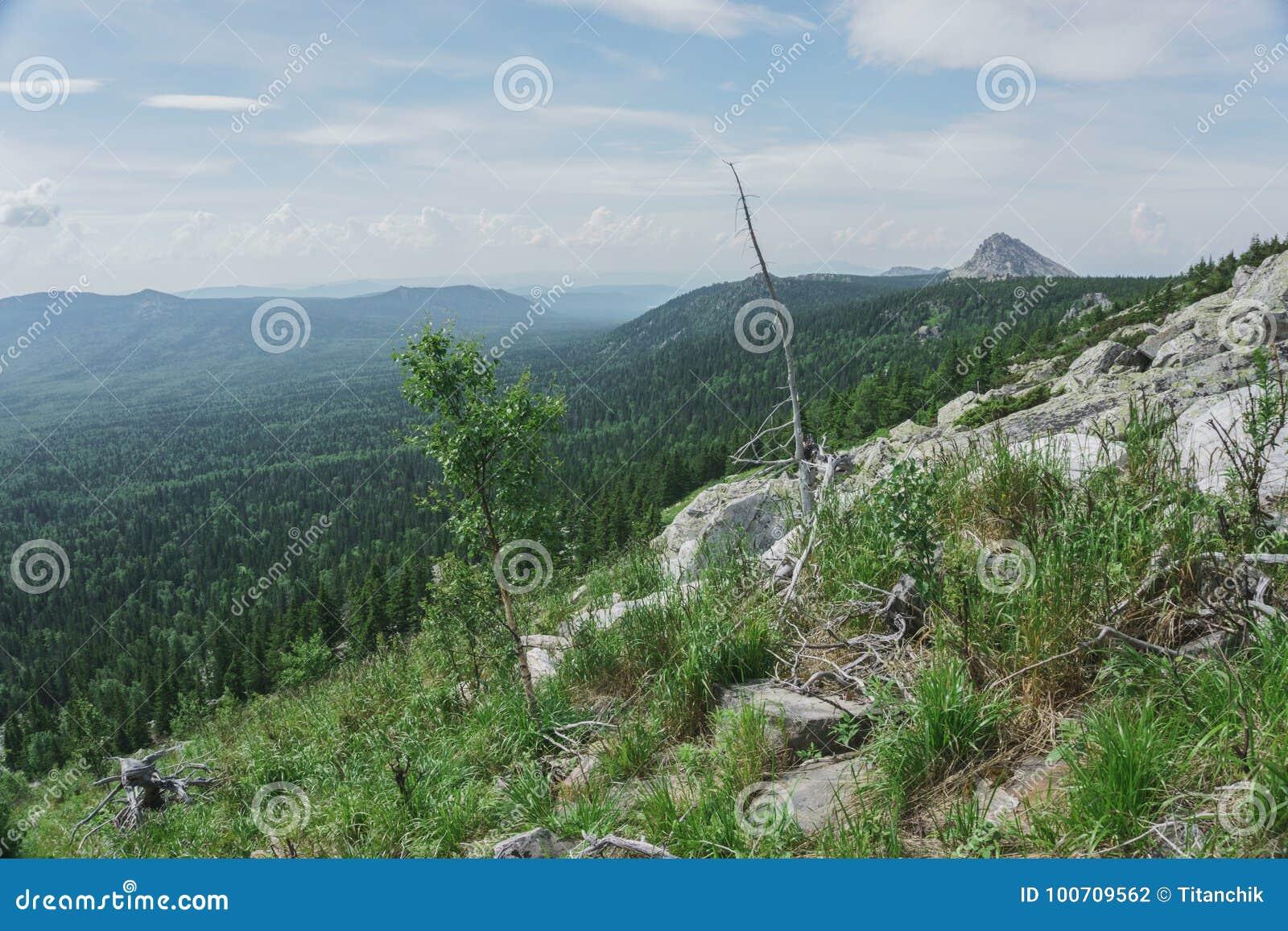 Natural landscape- alpine meadows Taganay