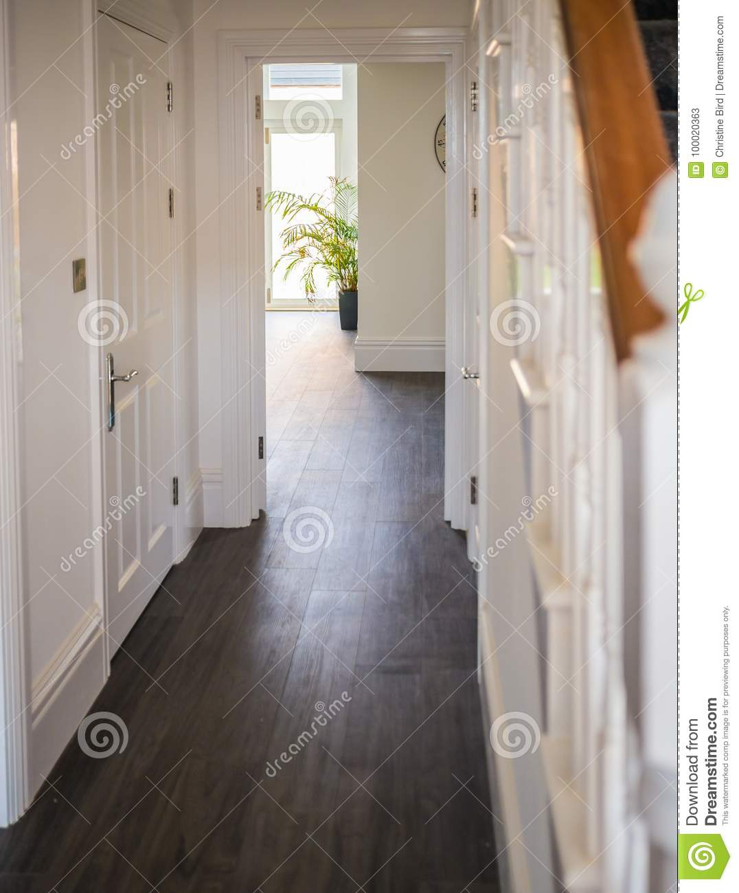 Natural light wood floor Oak Natural Light Illuminating Hallway In Home Depositphotos Natural Light Illuminating Hallway In Home Stock Image Image