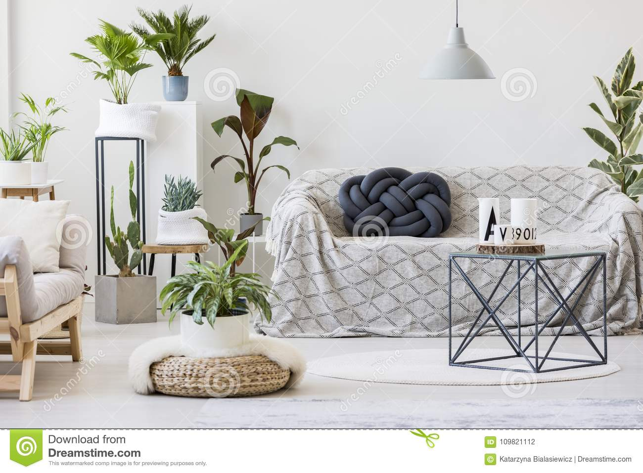 Natural Living Room Interior With Plants Stock Photo - Image of ...