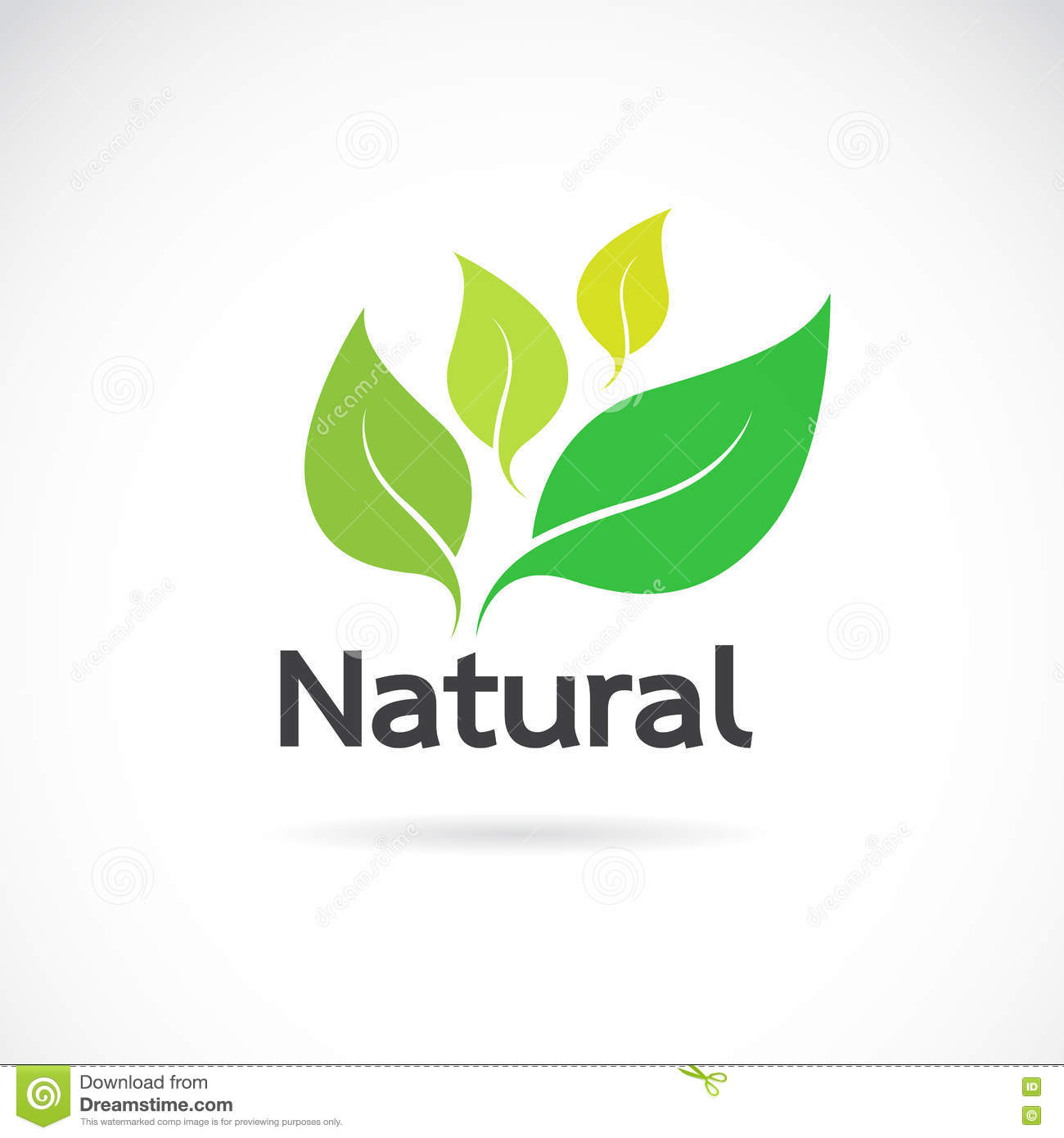 Natural Logo Vectors Photos and PSD files  Free Download
