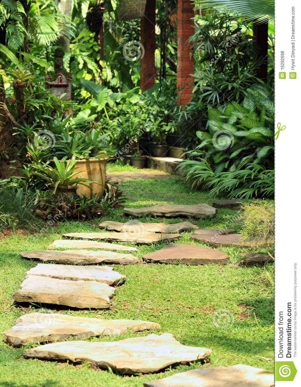 Natural lush garden stock photo image of plants steps for Dream plants for the natural garden