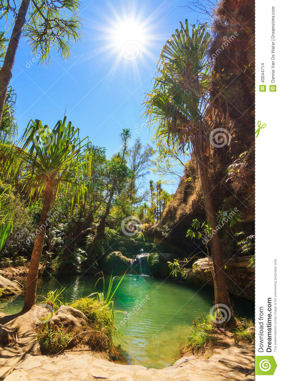 Natural Oasis Isalo Stock Photo Image Of Excursion