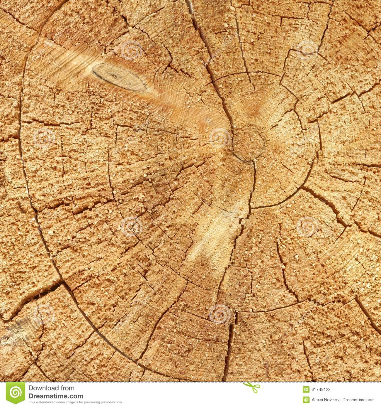 Natural Old Wood Grain Log Square Frame Texture Close-Up Stock Photo ...