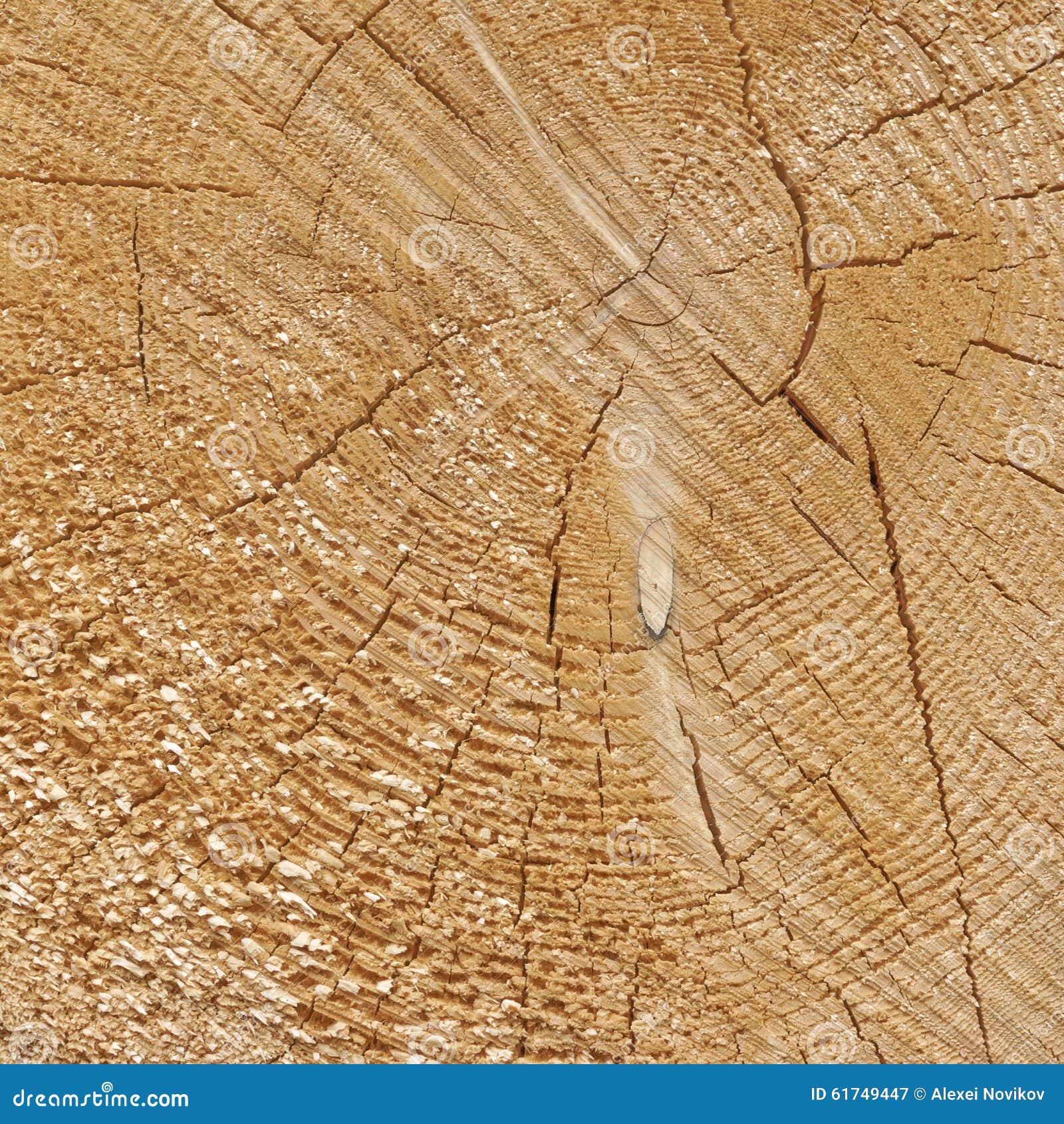 Natural Old Wood Grain Log Square Frame Texture Close-Up Stock Image ...