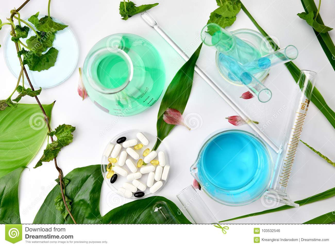Natural organic botany and scientific glassware, Alternative herb medicine, Natural skin care cosmetic beauty products.