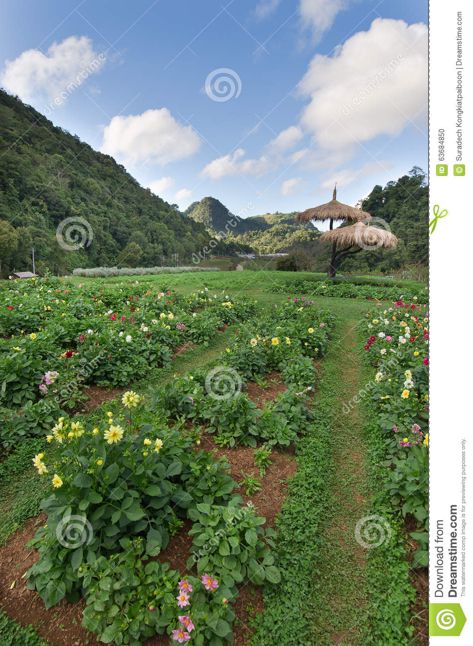 national farm and garden National center for appropriate technology attra - national sustainable agriculture information service [a]ccess to land, capital, and markets is creating the necessary environment for farmers to manage a profitable urban farm.