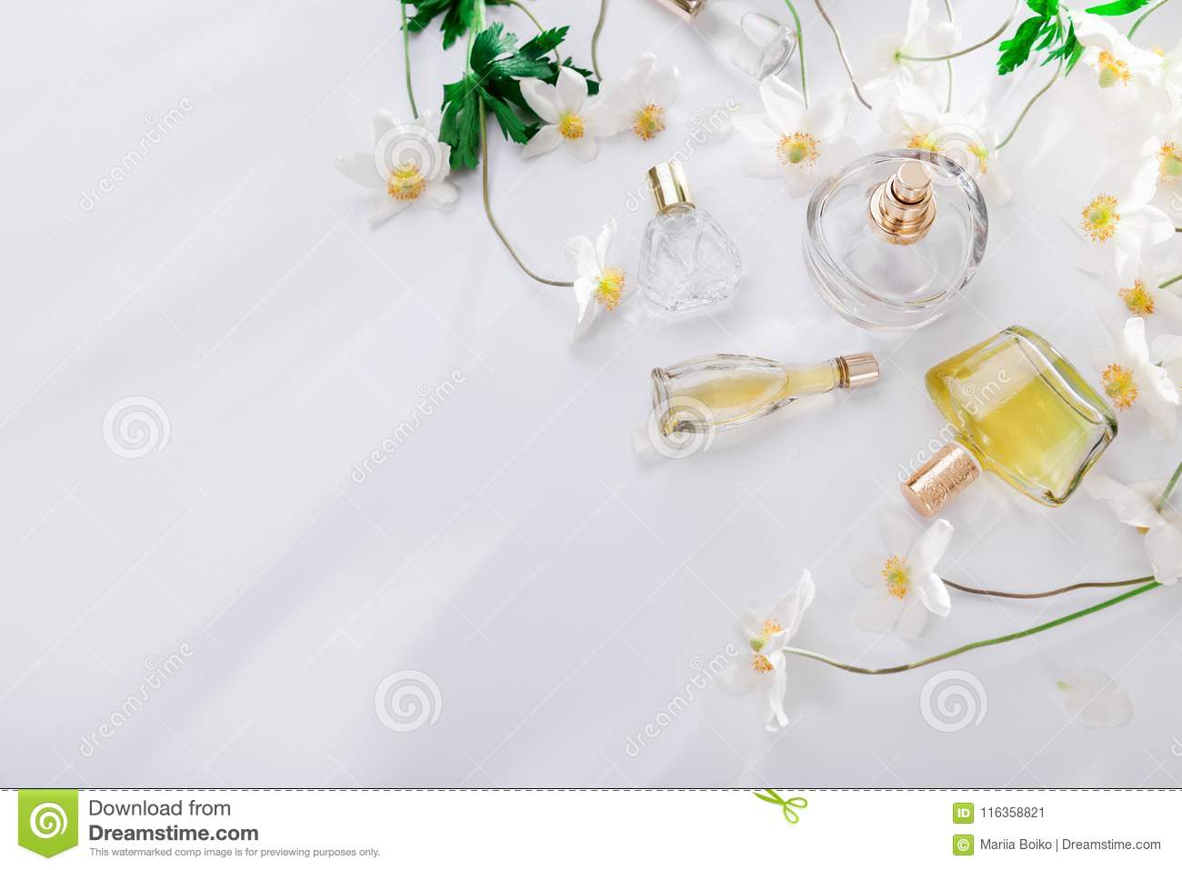 Natural perfume concept. Bottles of perfume with white flowers. Floral fragrance