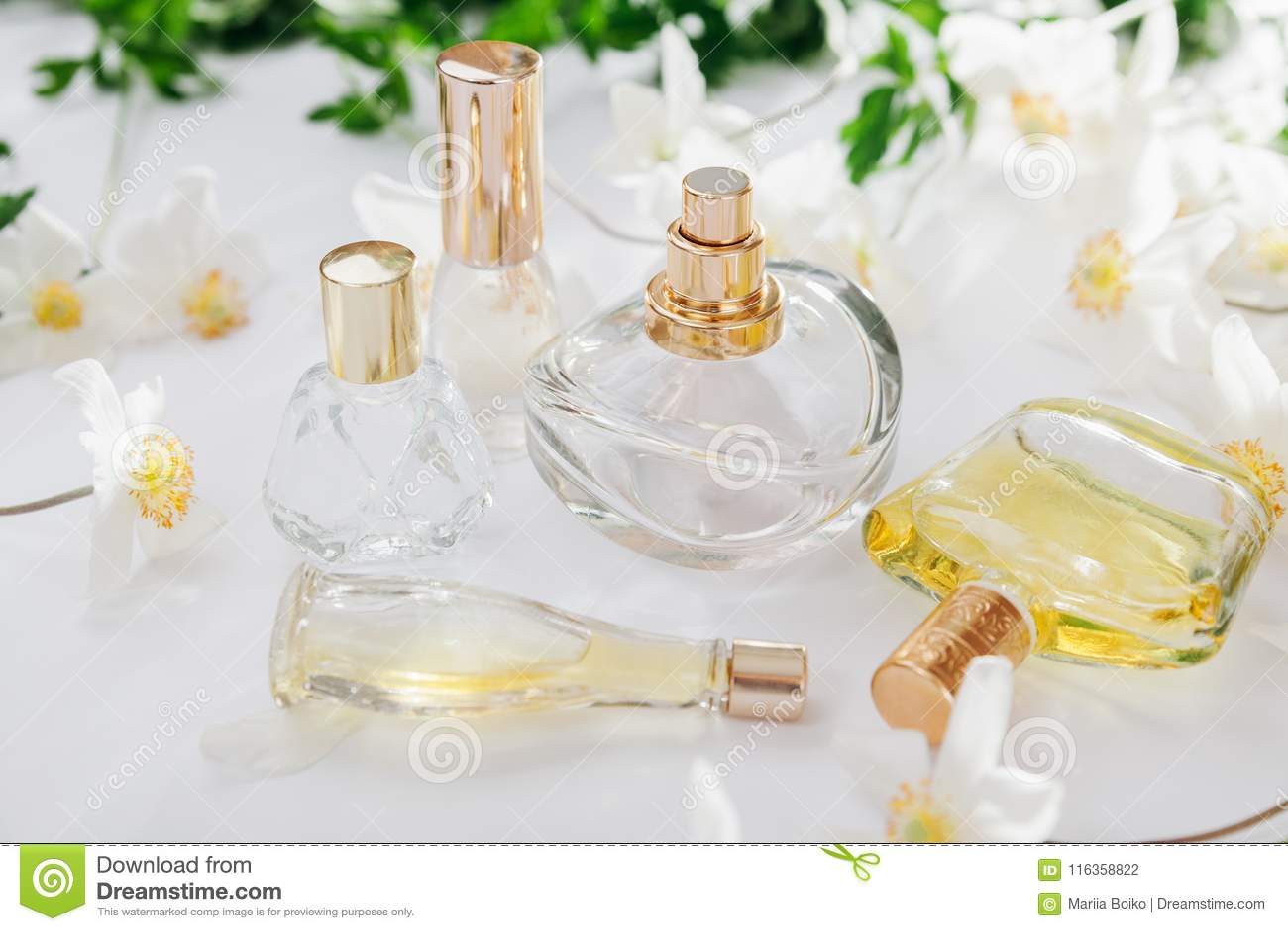 Natural perfume concept bottles of perfume with white flowers download natural perfume concept bottles of perfume with white flowers floral fragrance stock photo mightylinksfo