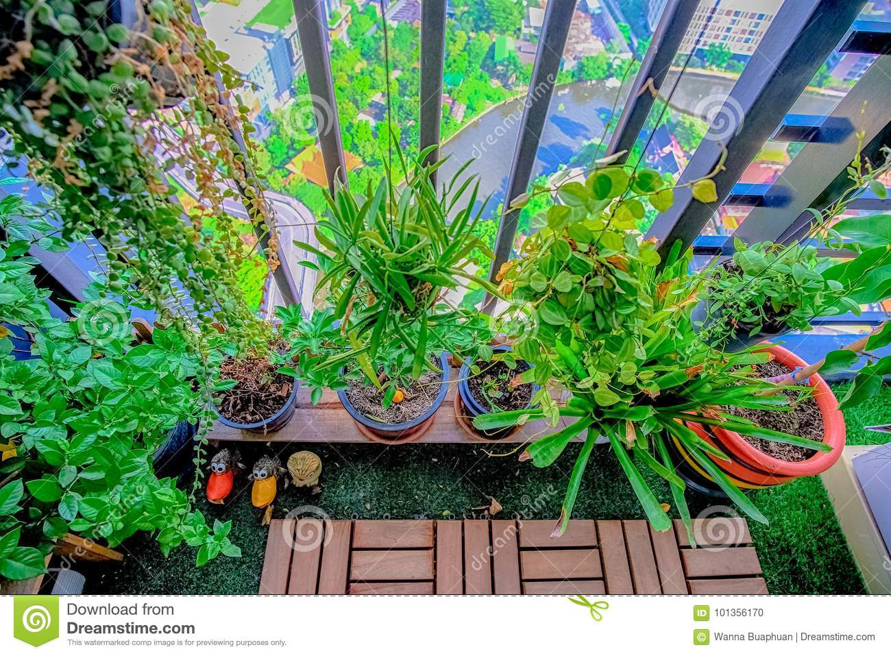 Natural plants in the hanging pots at balcony garden stock for Dream plants for the natural garden