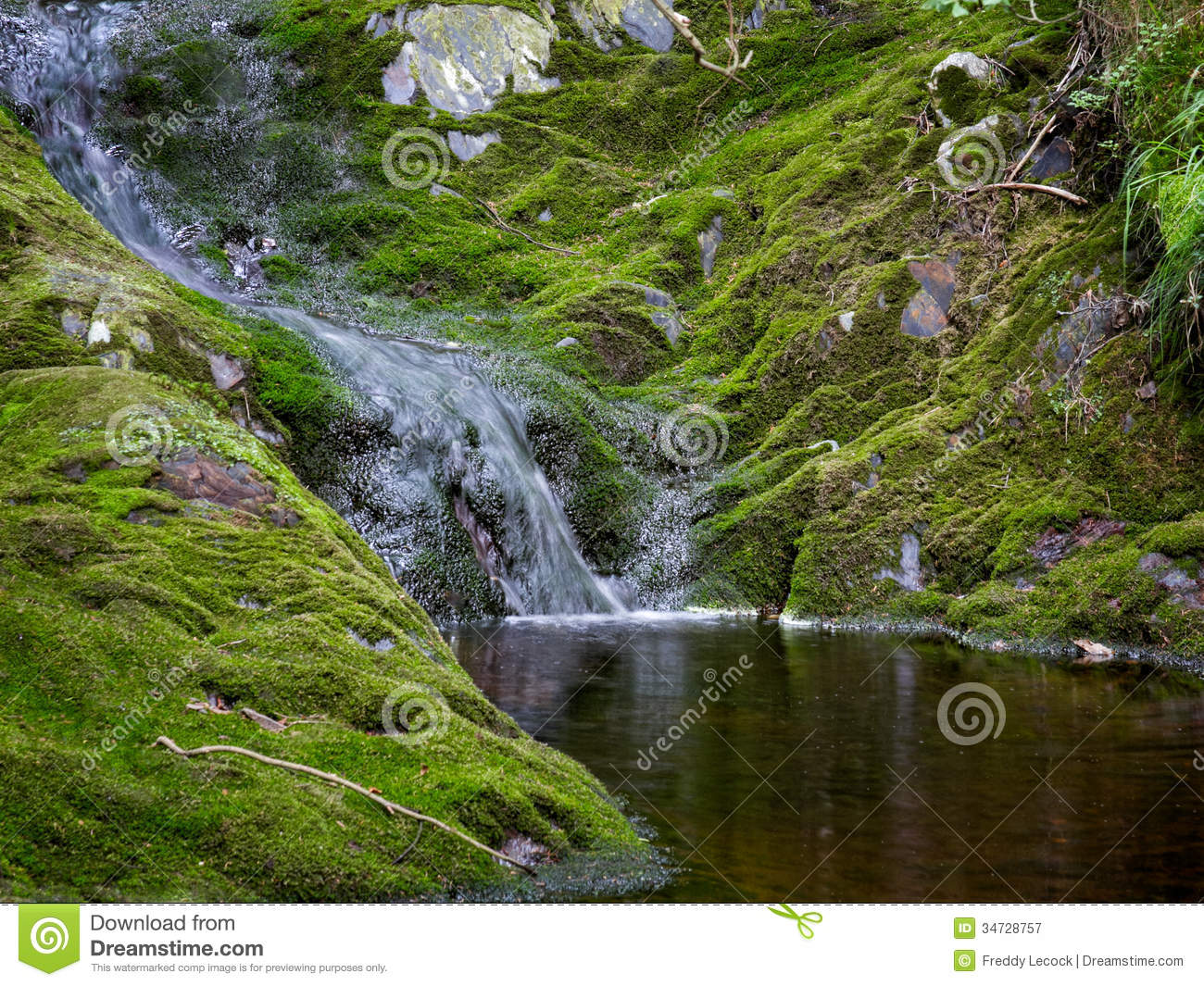 Natural pond royalty free stock photography image 34728757 for Small natural pond