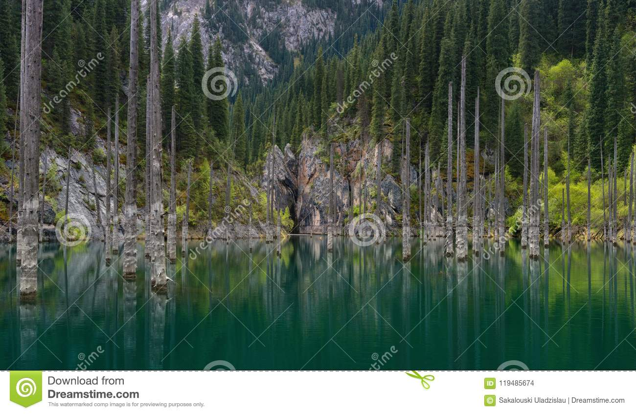 Natural Sight Of South Kazakhstan In Tyan-Shan Mountains - Alpine Kaindy Lake Also Known As Birch Lake Or Underwater Forest.The
