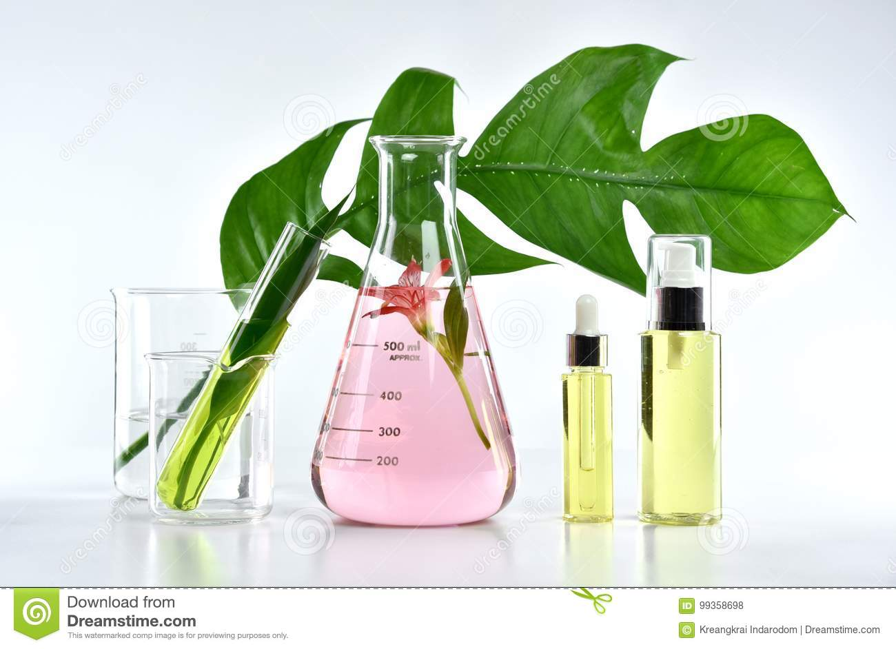 Natural skin care beauty products, Natural organic botany extraction and scientific glassware
