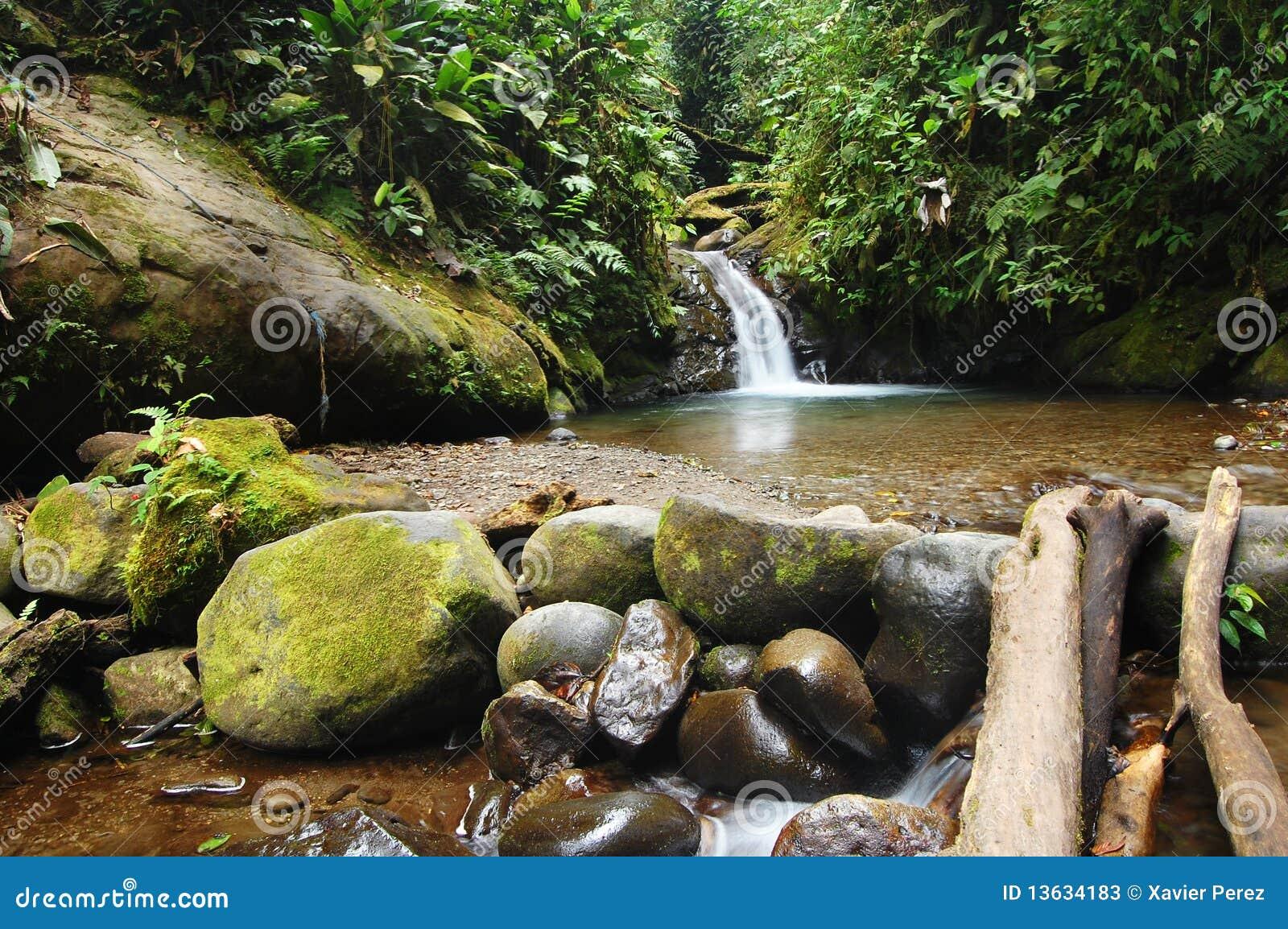 natural spring waterfall stock image image of mindo 13634183