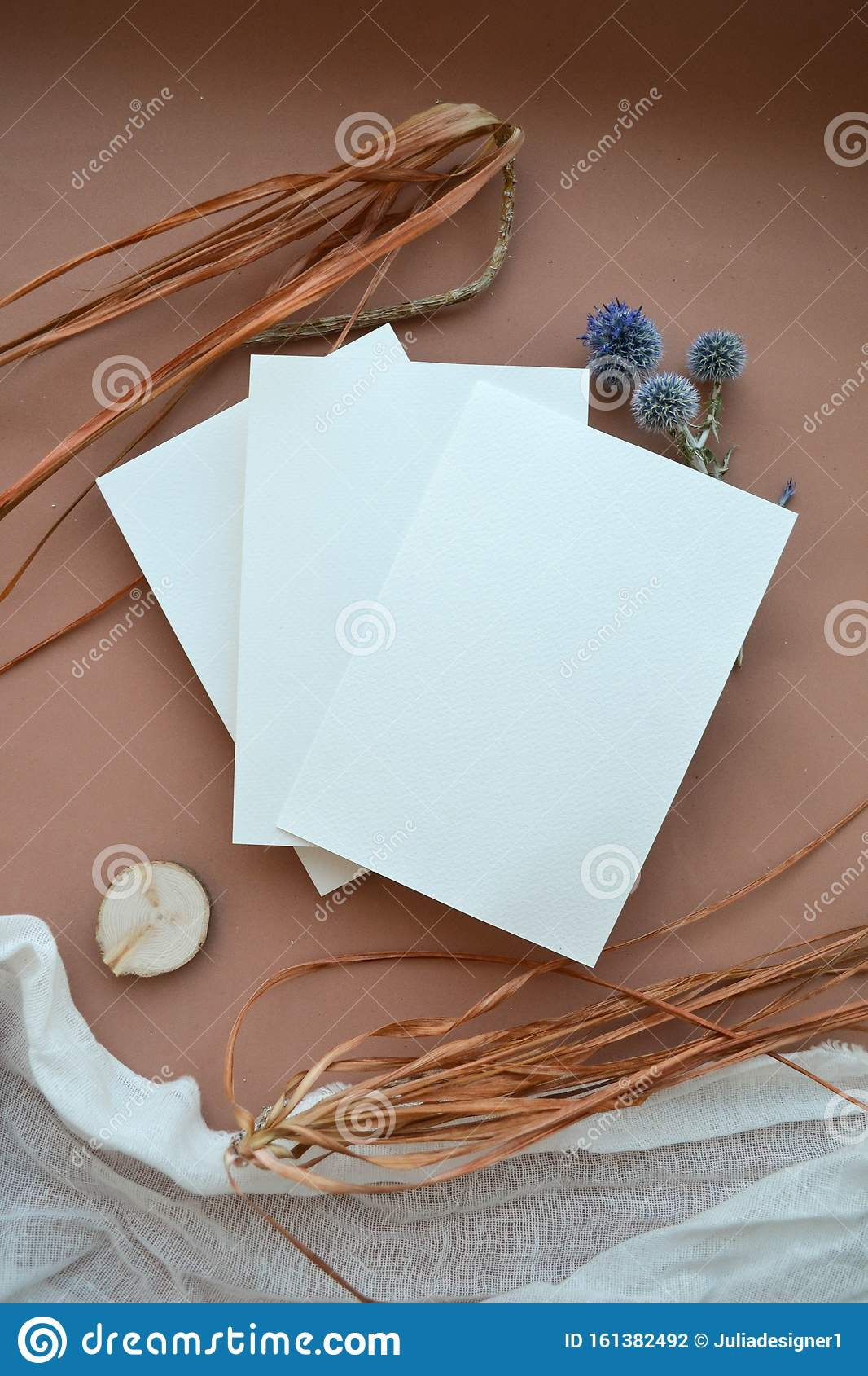 Natural stationery clipart with autumn herbarium