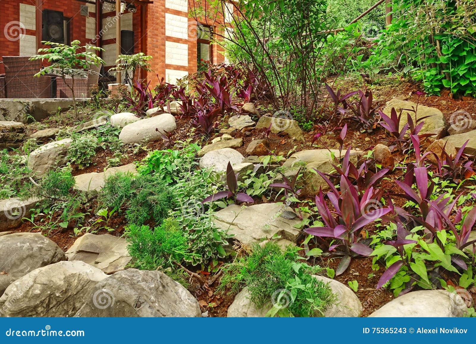 Natural Stone Landscaping. Backyard Decorative Garden. House Ter ...