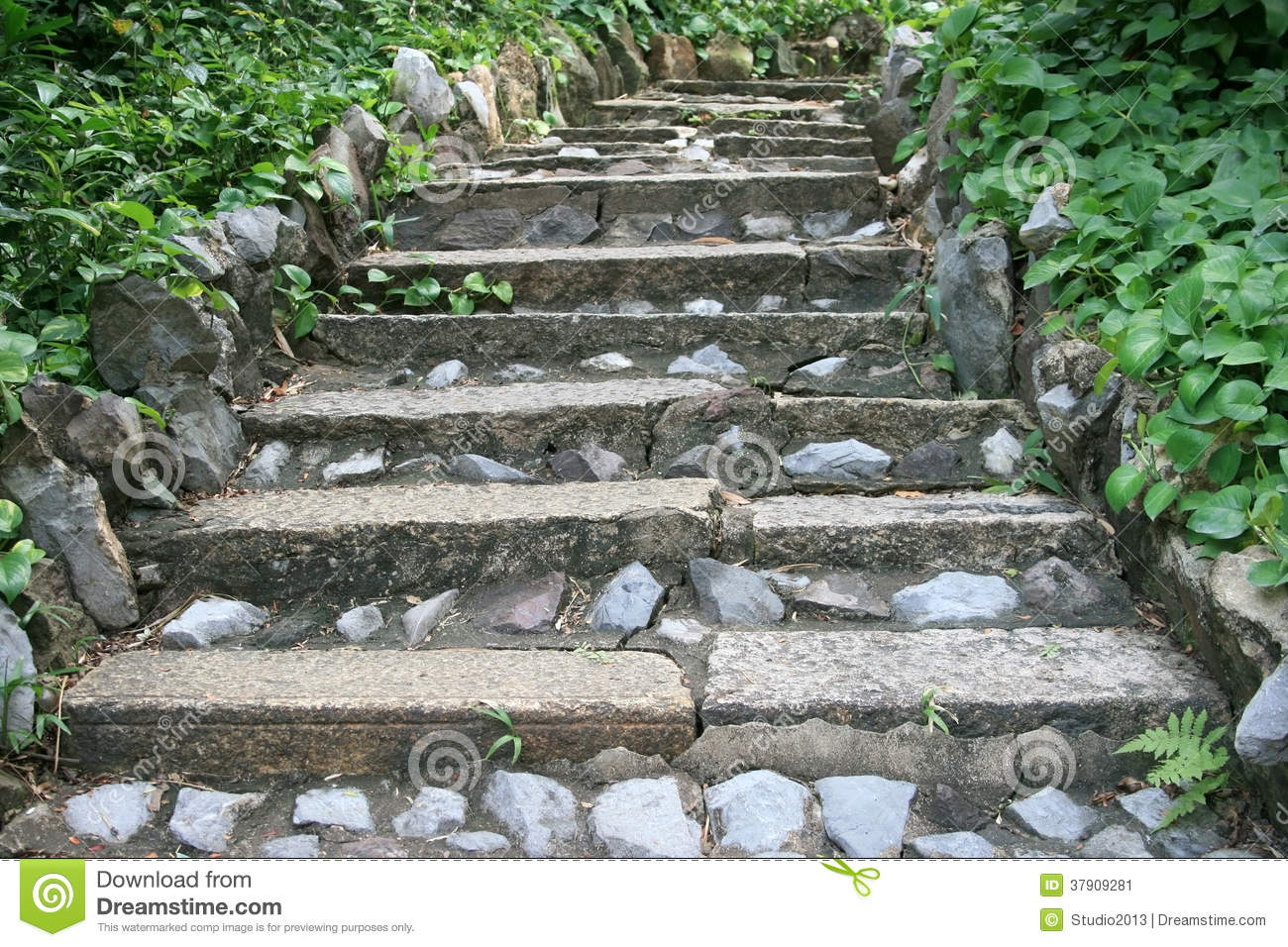 Natural stone stairs landscaping stock image image 37909281 - Escaleras de piedra ...