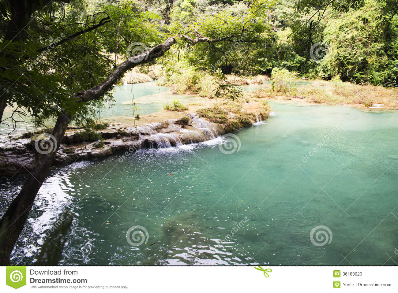 Natural Swimming-pools Stock Photo - Image: 36180020