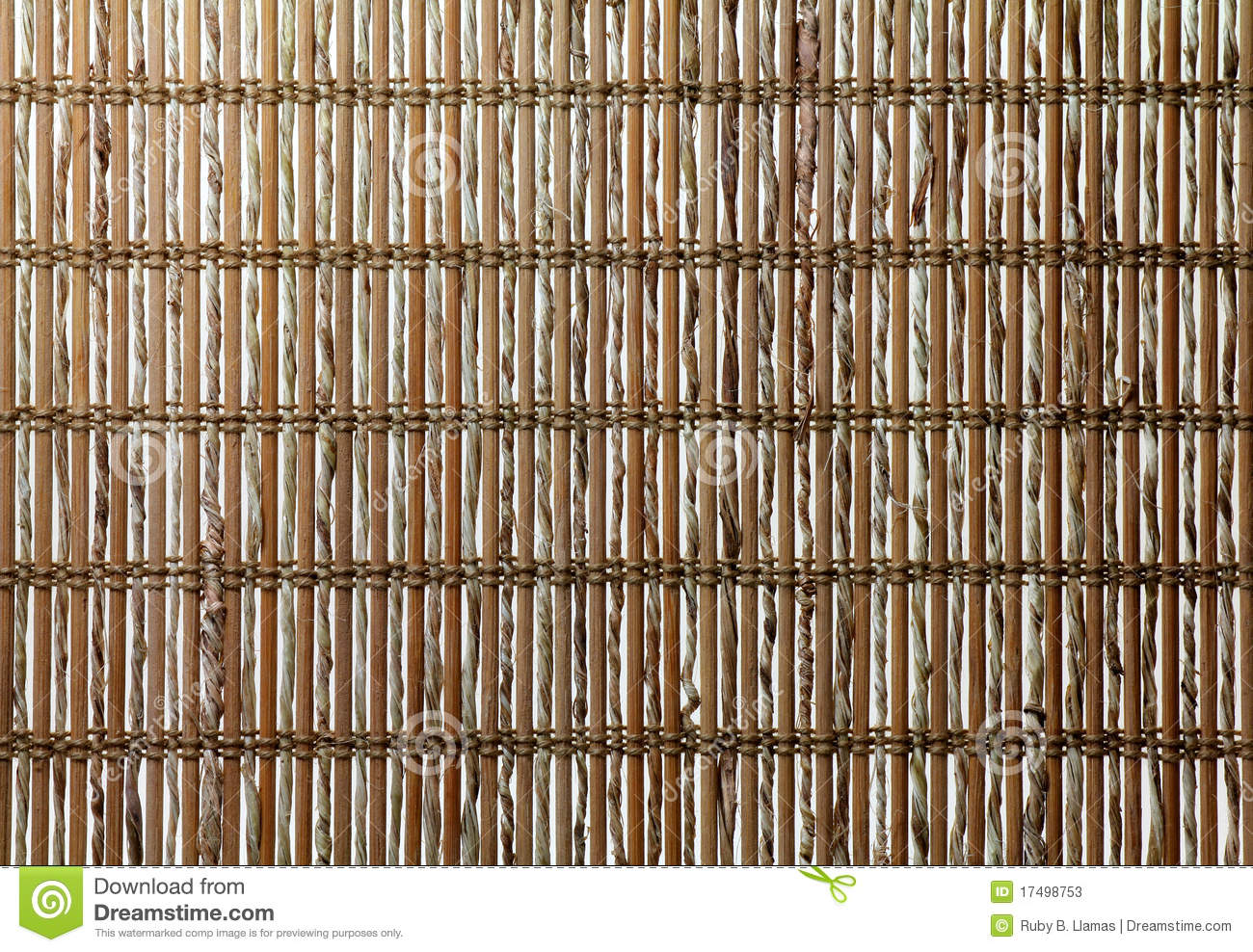 Natural Twigs Background Texture