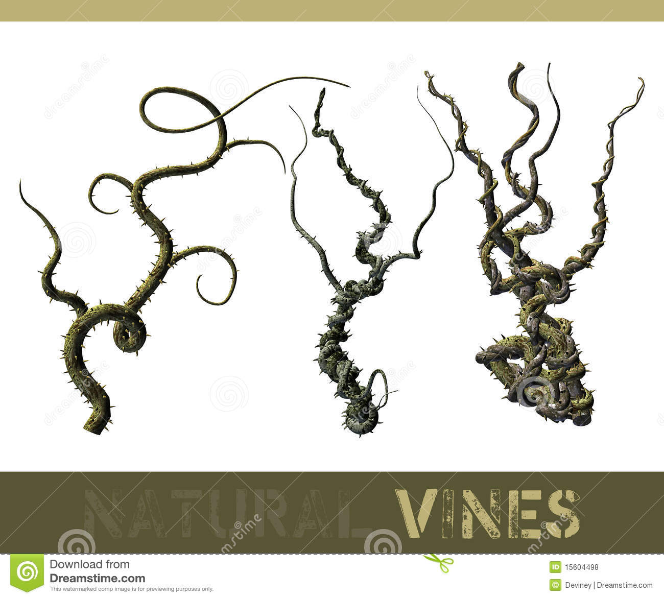 Natural Vines Royalty Free Stock Photos - Image: 15604498