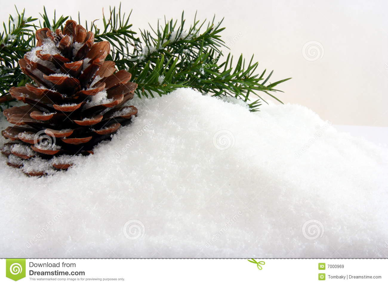 Natural Winter Background With Cone Royalty Free Stock