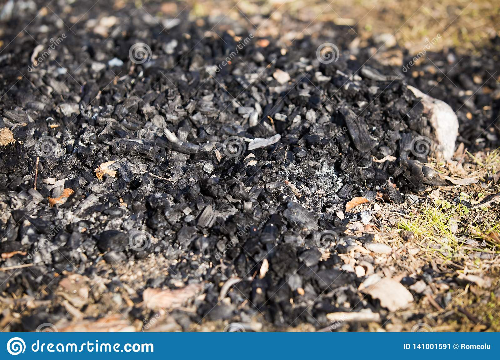 Natural wood charcoal biomass for energy