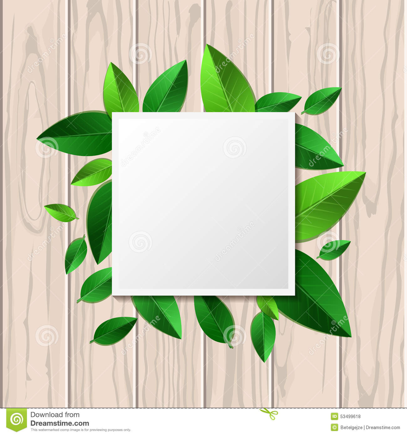 Natural Wooden Texture Background And Square Green Leaf