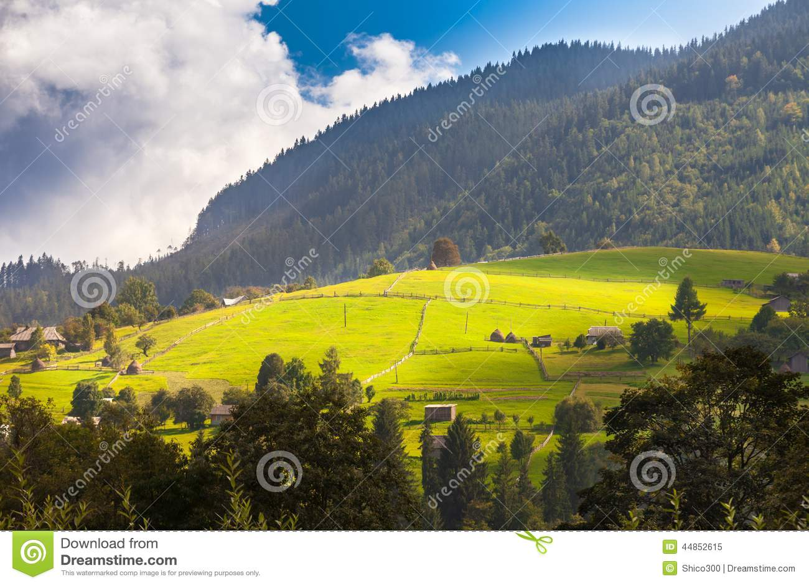 Naturaleza hermosa de las montañas y de la colina en verano