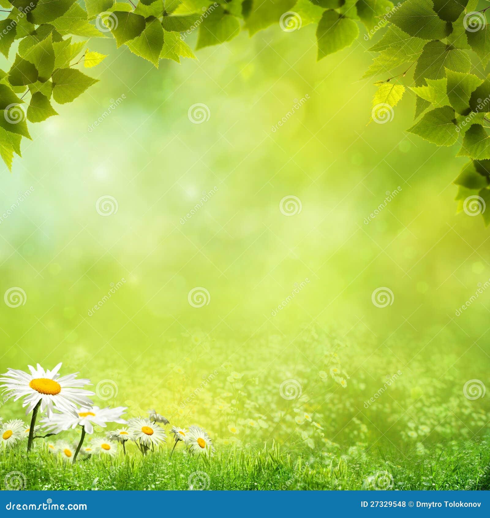 Naturalni piękno tła