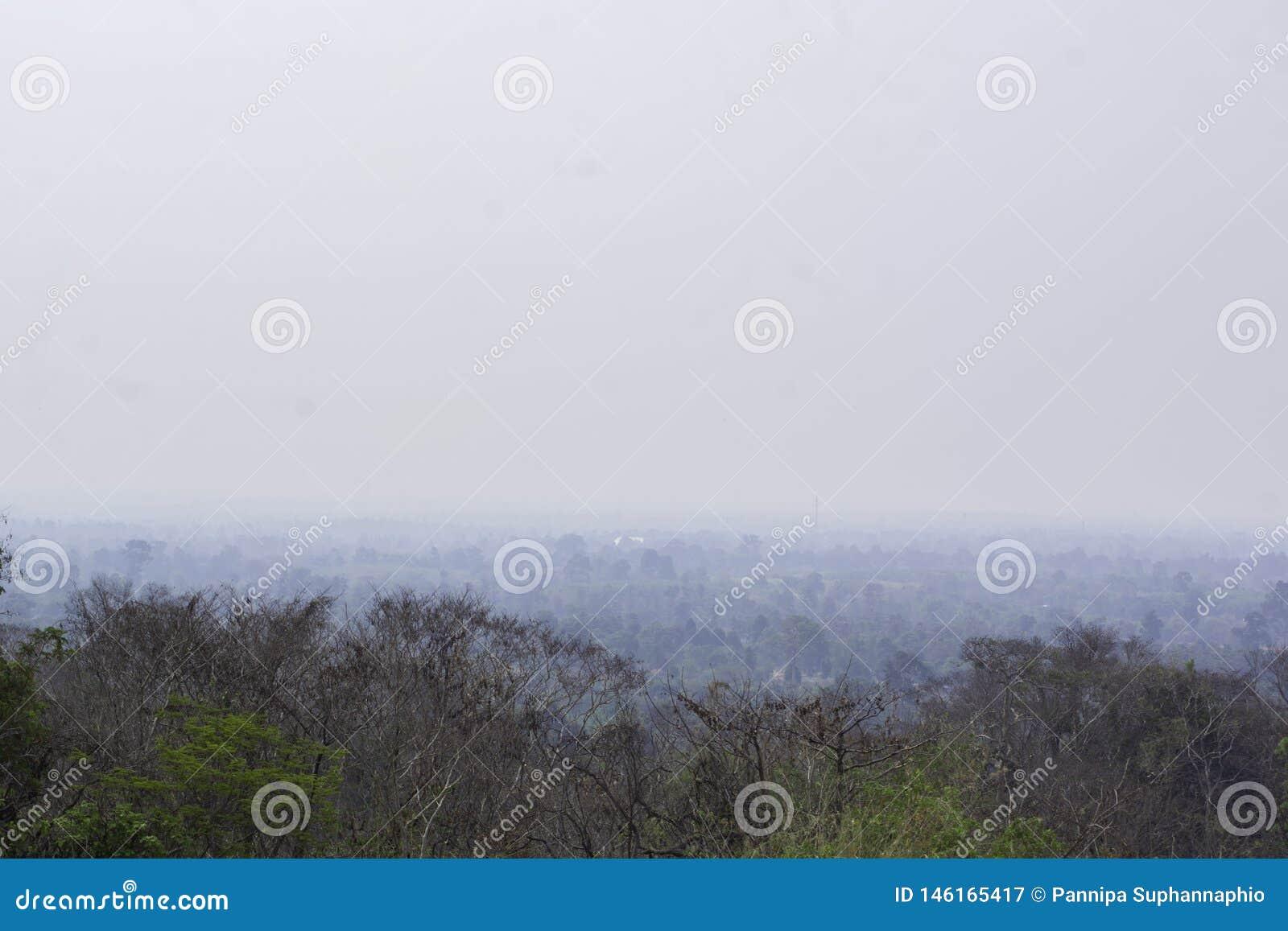 Naturalny kt?ry zakrywa z smogiem