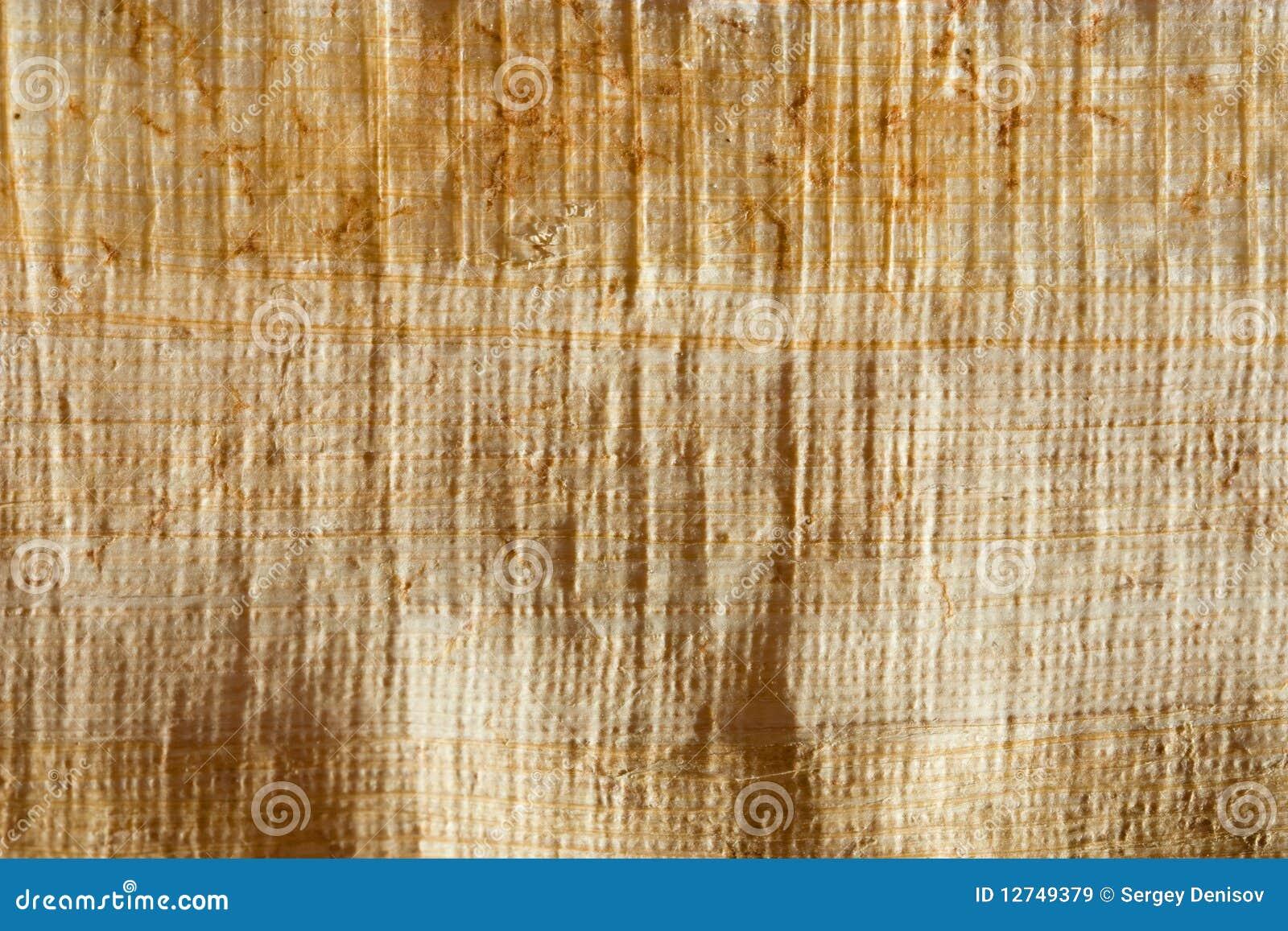 Naturalny papirus