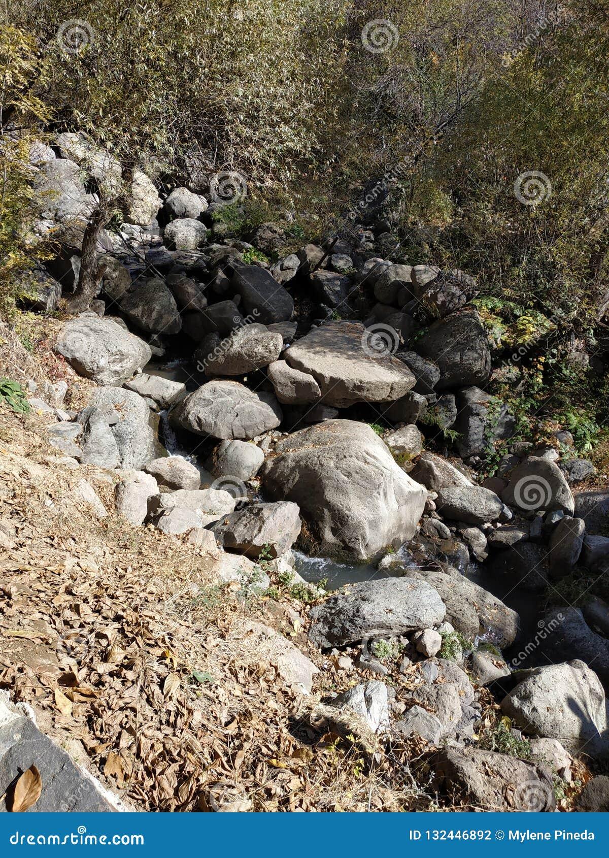 Naturalny strumień