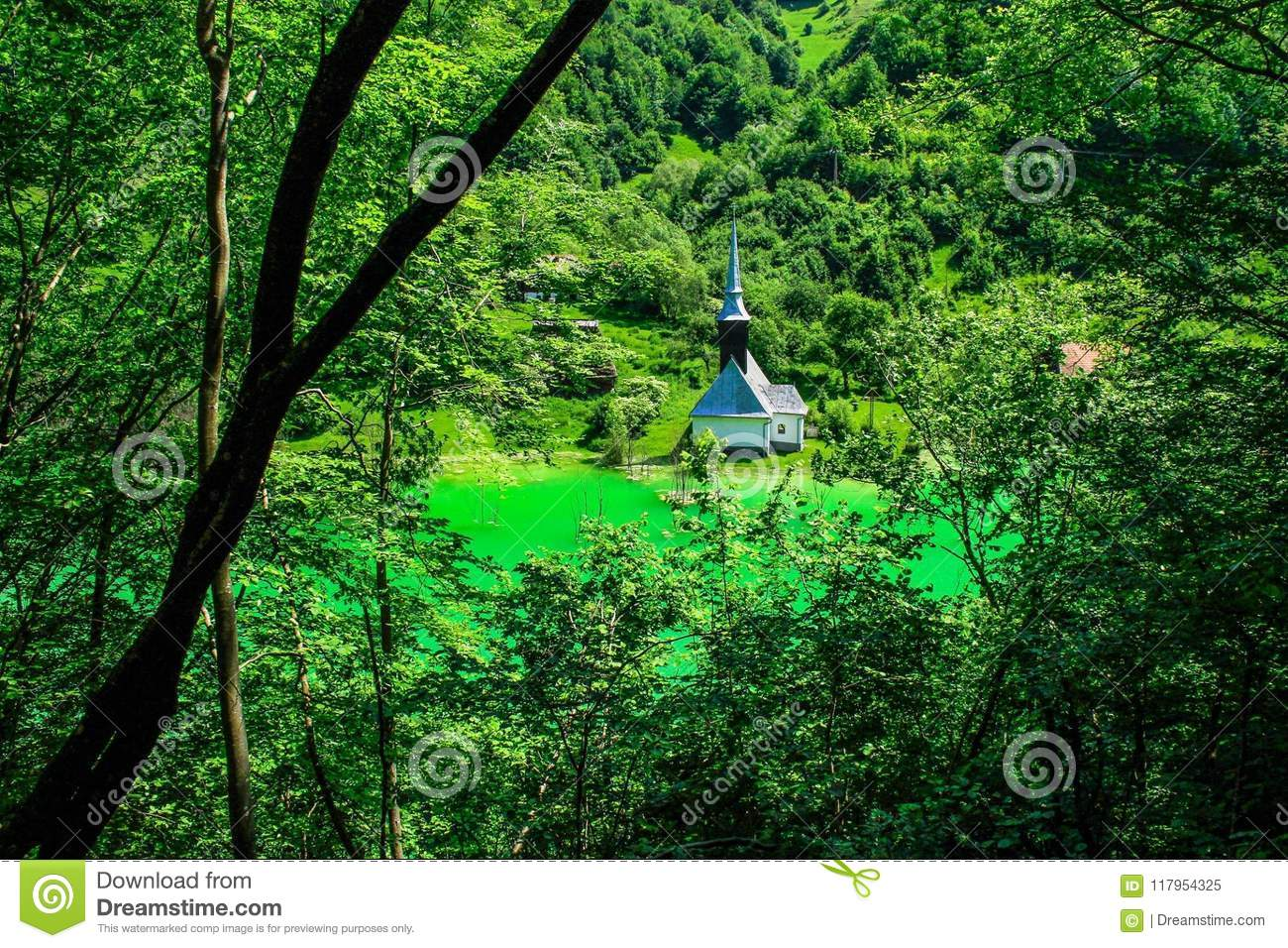 Nature Is The Art Of God Stock Image Image Of Forest 117954325