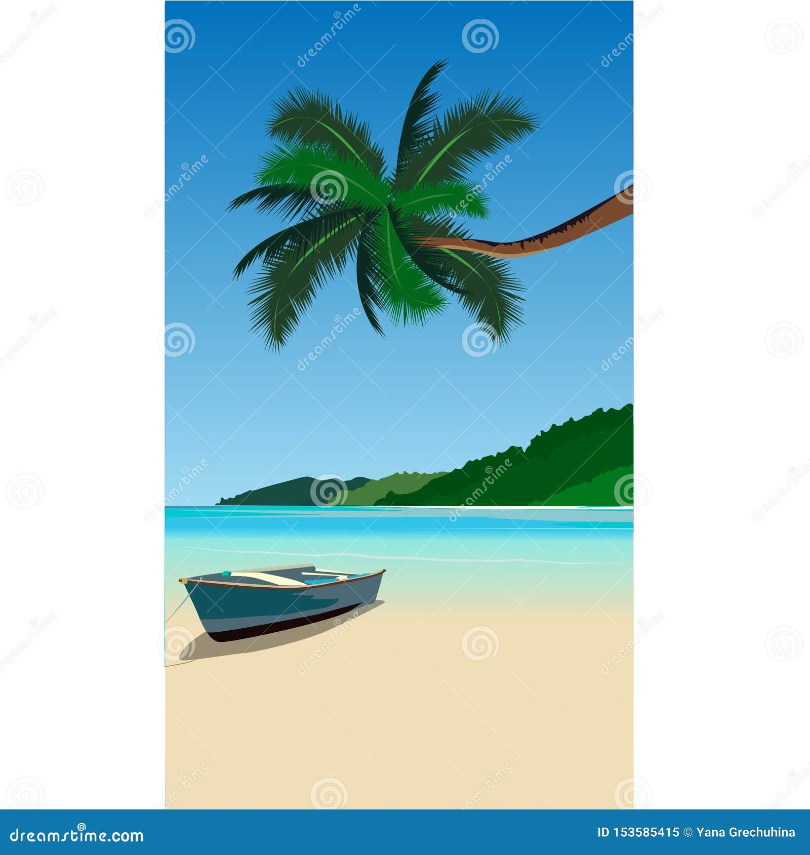 Nature azure beach palm tree shore wave boa