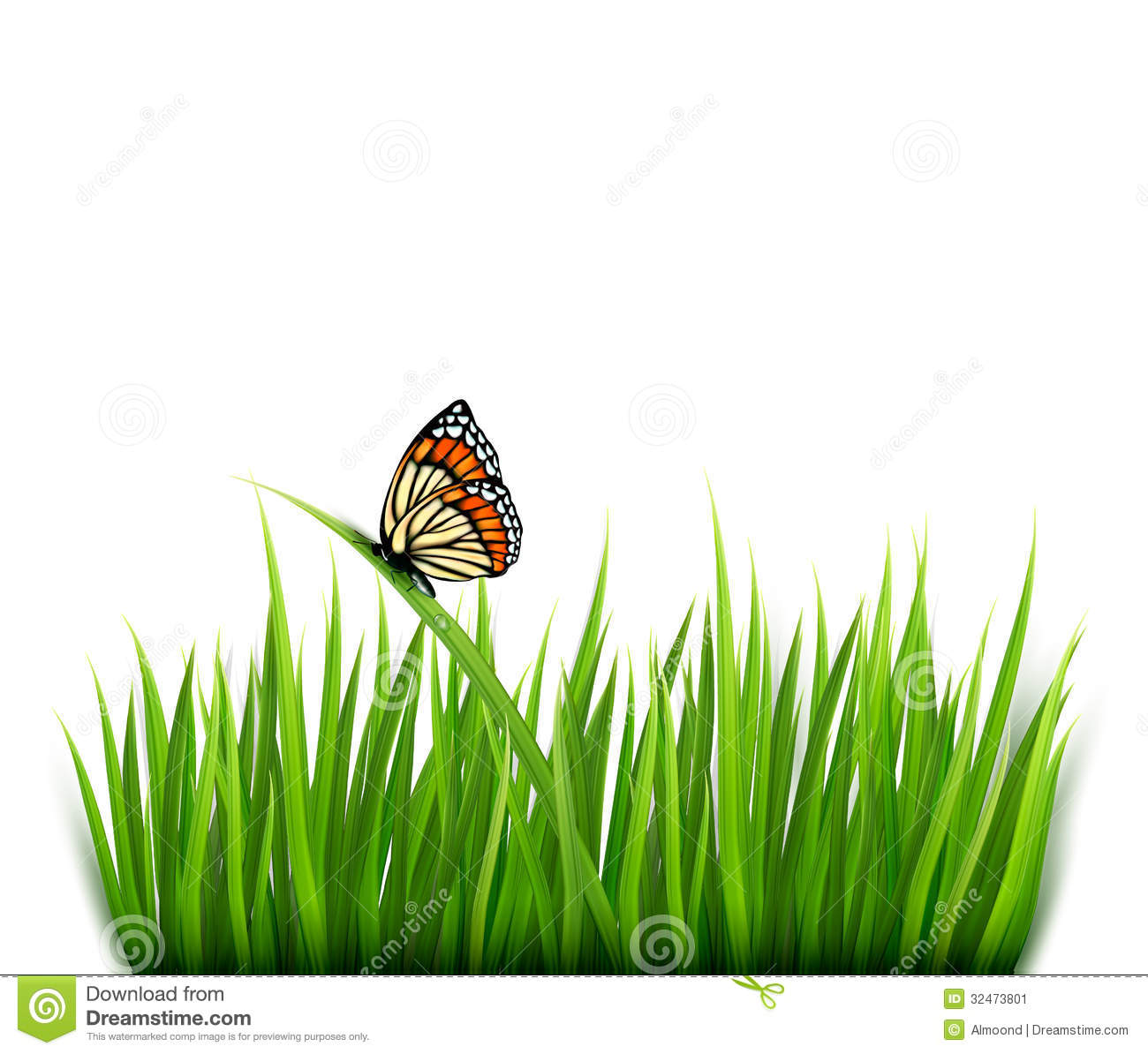 Nature Images 2mb: Nature Background With Green Grass And A Butterfly Stock