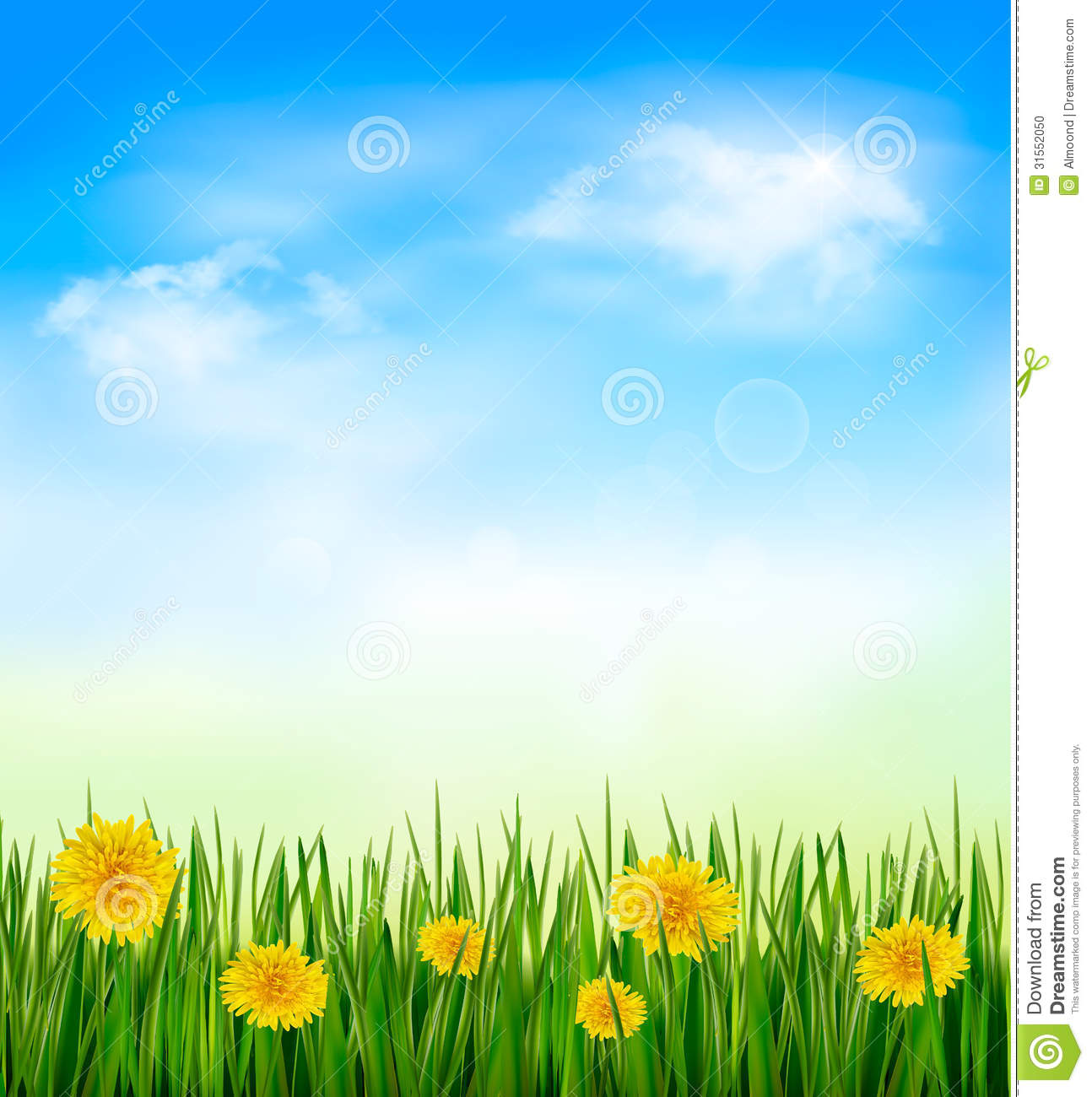 grass and sky backgrounds. Nature Background With Green Grass And Flowers Sky Backgrounds