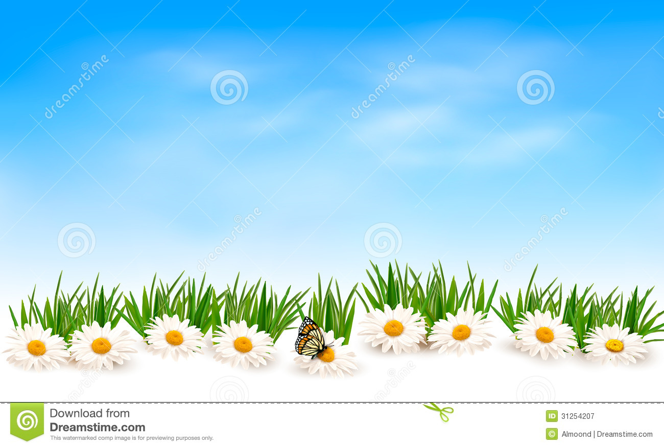 Nature Background With Green Grass And Flowers And Royalty Free ...