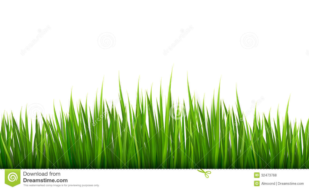 nature background with green grass illustration 32473768 megapixl