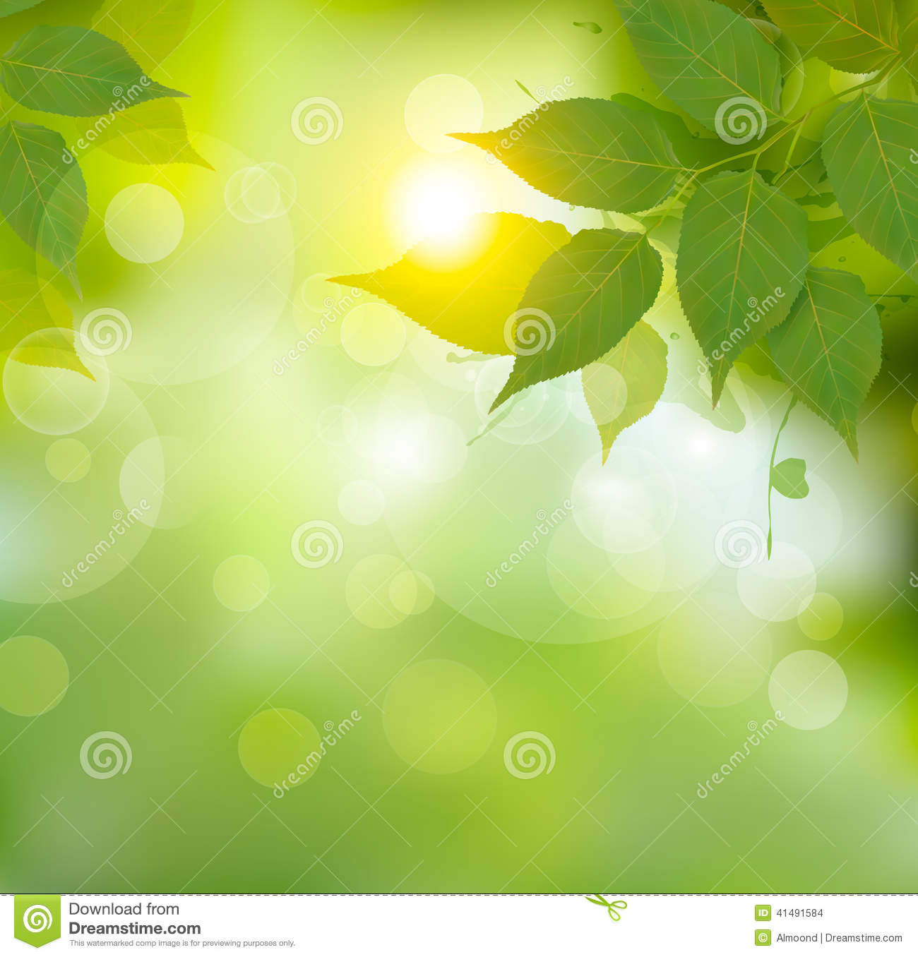 Nature background with green spring leaves.