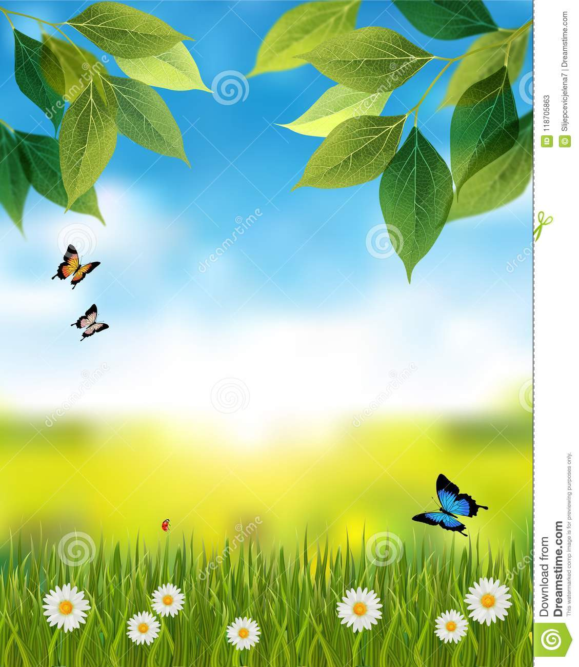 Nature vertical background with spring or summer scene - Nature wallpaper vertical ...