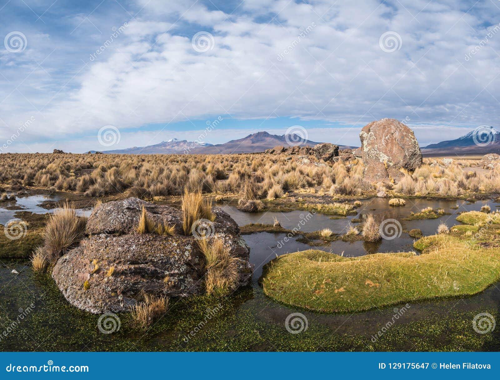 Nature Of Bolivia Stock Image Image Of Altiplano Quagmire 129175647