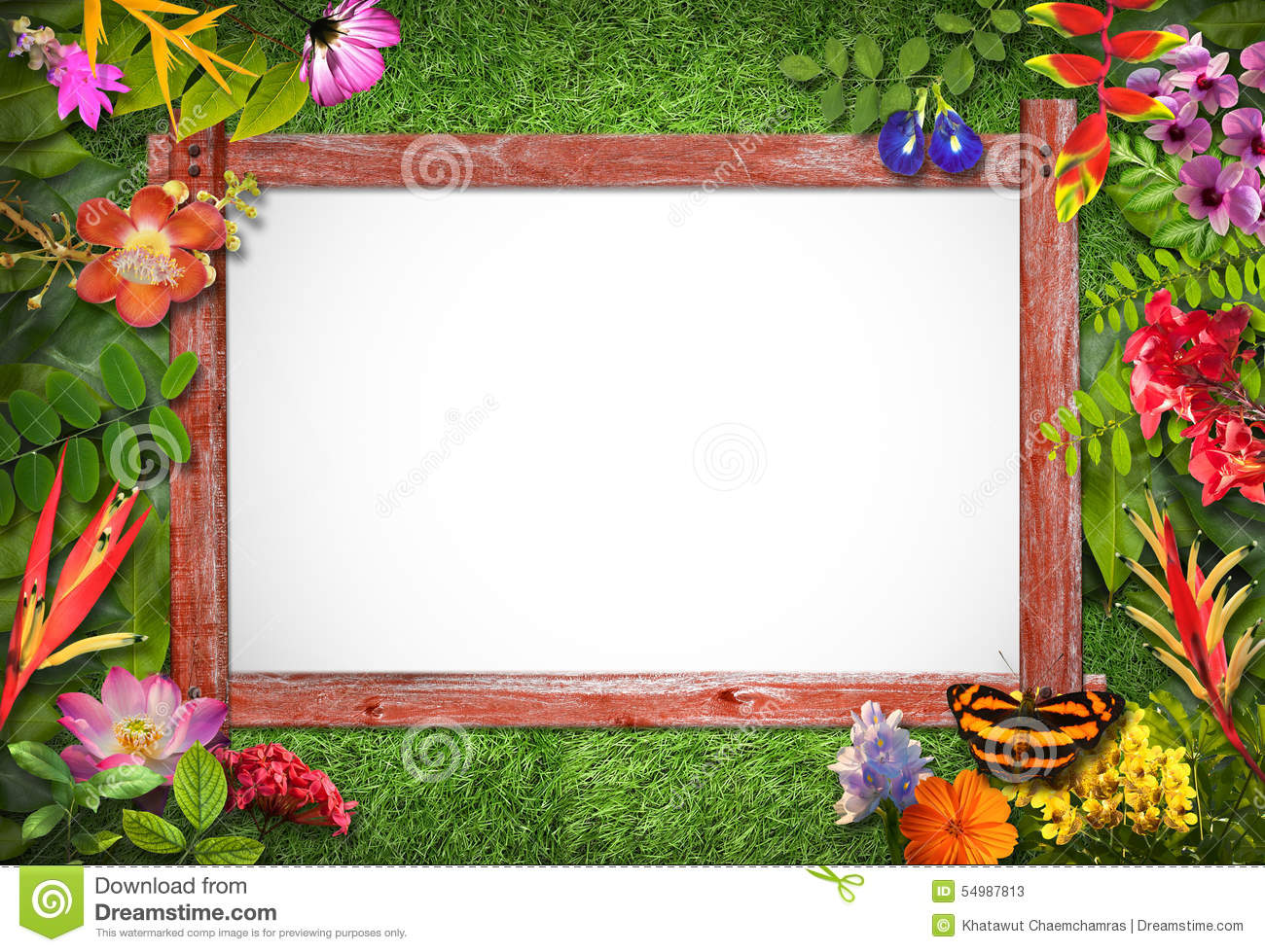 Nature border with flower and green leaf stock image image 54987813 - Plant decorating ideas tasteful nature ...